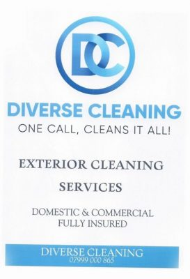 Diverse-cleaning1
